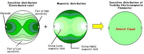 功能磁场分布图像。